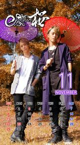 Calendar 2015.11